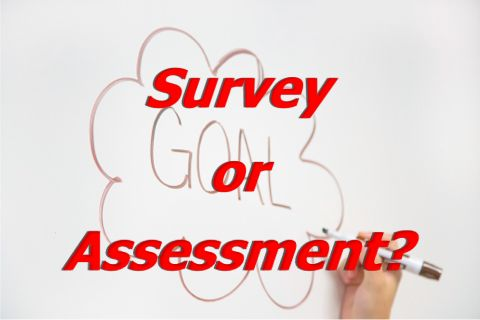Assessment or Survey?